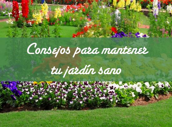 Consejos para mantener tu jardín sano - Vivero en Onil | Centro de ...