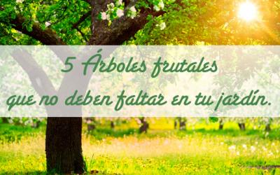 5 Árboles frutales que no deben faltar en tu jardín.