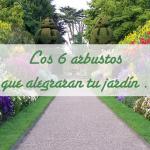 Los 6 arbustos que alegraran tu jardín .