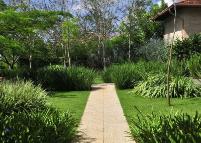 2-jardin-moderno-tropical-4