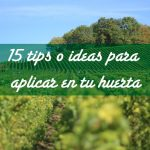 15 tips o ideas para aplicar en tu huerta